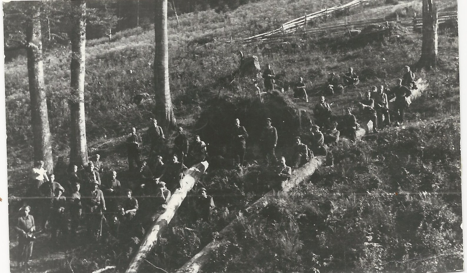 4th Battalion 1PSP AK soldiers in  the Forest of Biała Woda   Prior To Action on Zollgrenzschutz post