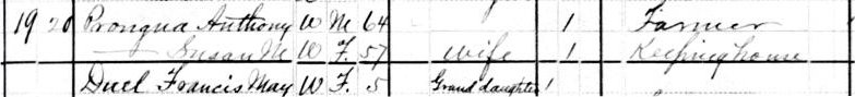 Image of portion of 1880 US Census showing Prongua